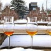 Ice Cider, Cidre de Glace: The Creation and Growth of a New Industry