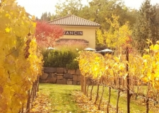 DANCIN Vineyards             Wine is Time and Place