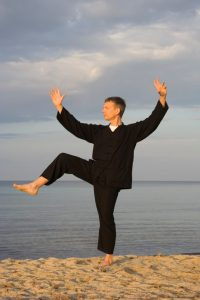 tai chi - posture kick with right heel