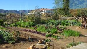 Garden with villa in background.