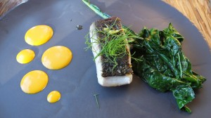 Local yellow tail, fresh kale and a white pepper emulsion.