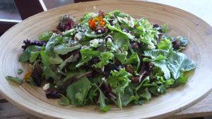 Fresh baby green salad