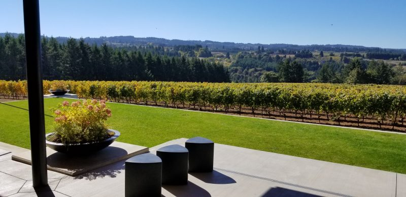 Relaxing in the wine country