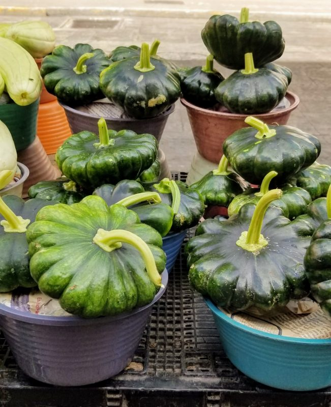 pumpkins are grown in the Yucatan