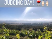 Lum Eisenman wine Contest Judging Day