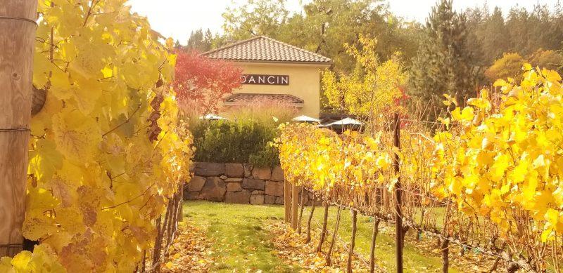 DANCIN Winery in the Fall