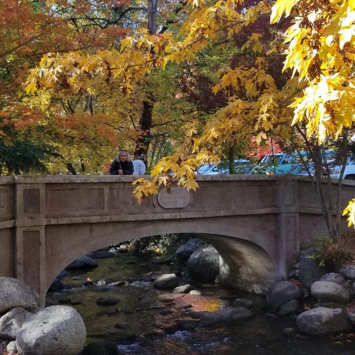 Bridge in Lithia Park